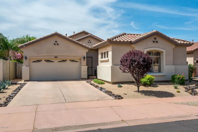 3009 W Espartero Way, Phoenix, AZ 85086 (MLS #5923505) :: CC & Co. Real Estate Team