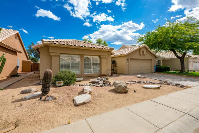 3539 E Rockwood Drive, Phoenix, AZ 85050 (MLS #5923545) :: Riddle Realty