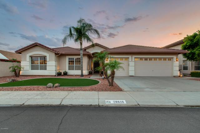 20616 N 53RD Avenue, Glendale, AZ 85308 (MLS #5923589) :: REMAX Professionals