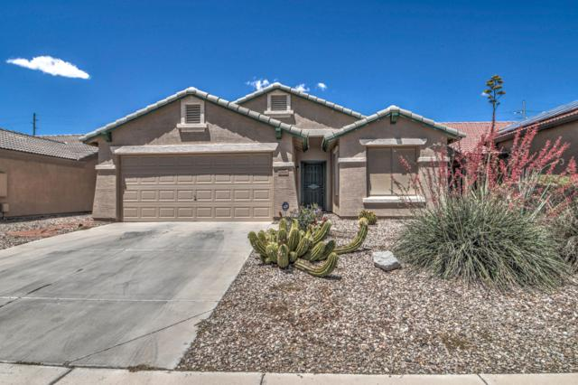 25008 W Illini Street, Buckeye, AZ 85326 (MLS #5923591) :: CC & Co. Real Estate Team