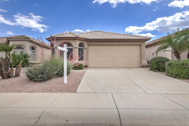 3241 E Kristal Way, Phoenix, AZ 85050 (MLS #5923600) :: CC & Co. Real Estate Team
