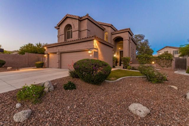 2917 N Avoca Circle, Mesa, AZ 85207 (MLS #5923614) :: Realty Executives
