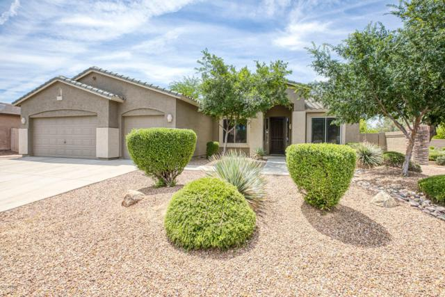 3017 E Blue Ridge Place, Chandler, AZ 85249 (MLS #5923647) :: Scott Gaertner Group