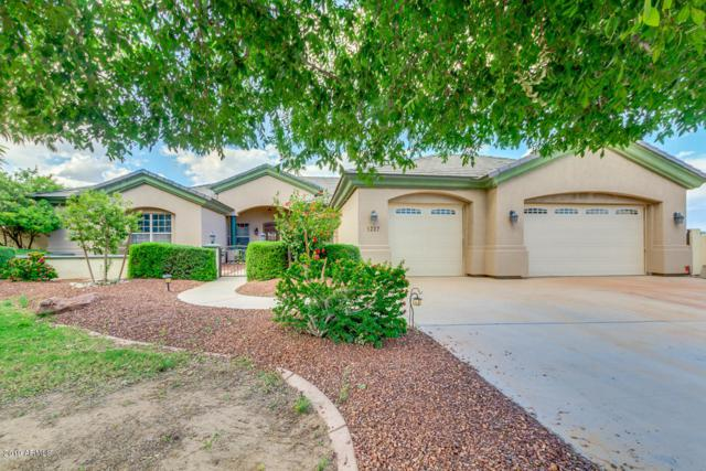 3217 N Katie Lane, Litchfield Park, AZ 85340 (MLS #5923650) :: CC & Co. Real Estate Team