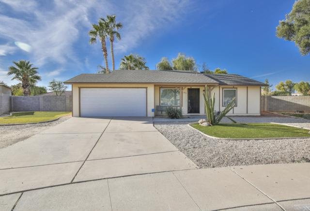 1811 W Stottler Drive, Chandler, AZ 85224 (MLS #5923658) :: Devor Real Estate Associates