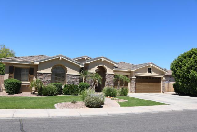 644 E Hopkins Road, Gilbert, AZ 85295 (MLS #5923672) :: Revelation Real Estate