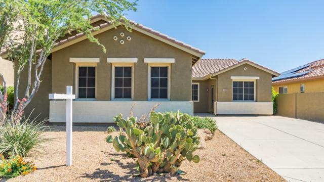 2505 W Shackleton Drive, Phoenix, AZ 85086 (MLS #5923743) :: The Daniel Montez Real Estate Group