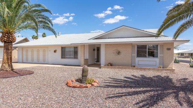 19003 N 134TH Avenue, Sun City West, AZ 85375 (MLS #5923752) :: Occasio Realty
