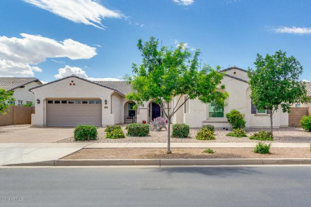 23152 S 202ND Way, Queen Creek, AZ 85142 (MLS #5923779) :: The Everest Team at My Home Group