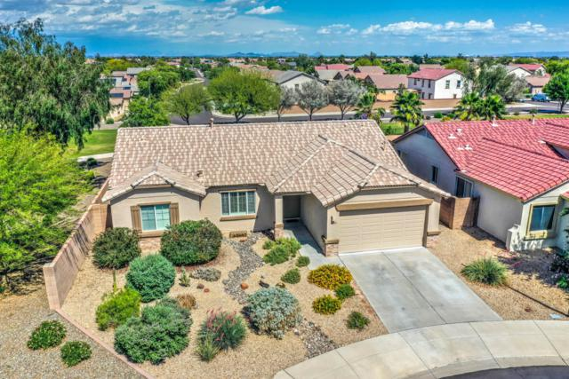 15329 N 181ST Drive, Surprise, AZ 85388 (MLS #5923796) :: Kepple Real Estate Group