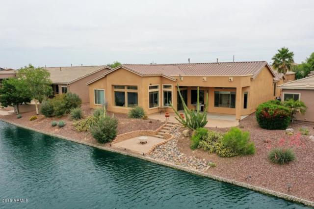 42584 W Mallard Lane, Maricopa, AZ 85138 (MLS #5923799) :: Revelation Real Estate
