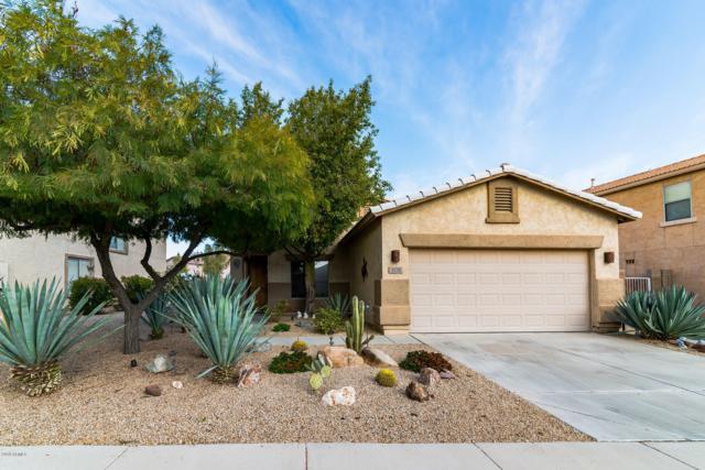 308 E Saddle Way, San Tan Valley, AZ 85143 (MLS #5923823) :: Arizona 1 Real Estate Team
