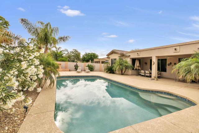 2732 E Zion Way, Chandler, AZ 85249 (MLS #5923905) :: The Daniel Montez Real Estate Group