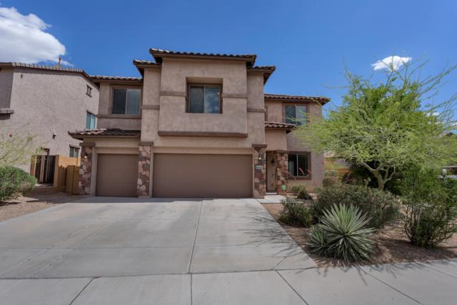 8997 W Plum Road, Peoria, AZ 85383 (MLS #5923907) :: The Results Group