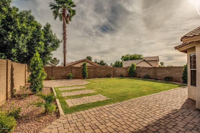 13161 W Evans Drive, Surprise, AZ 85379 (MLS #5923919) :: Riddle Realty