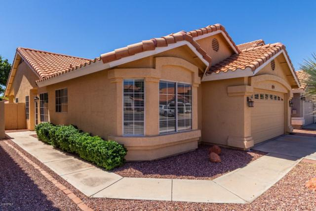 7509 W Kristal Way, Glendale, AZ 85308 (MLS #5923938) :: CC & Co. Real Estate Team