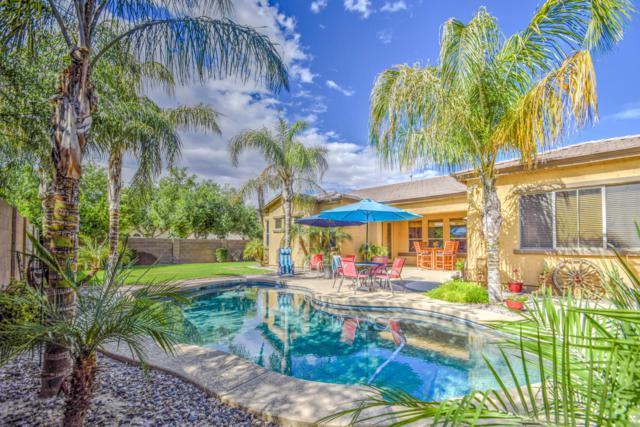 21195 S 187TH Street, Queen Creek, AZ 85142 (MLS #5923950) :: CC & Co. Real Estate Team