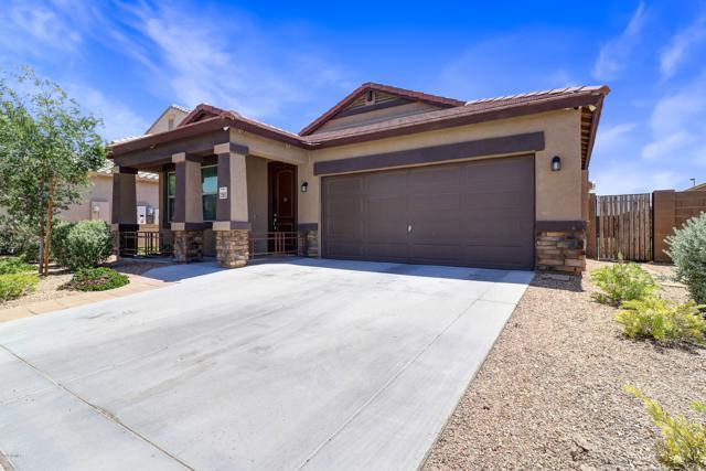 23803 W Parkway Drive, Buckeye, AZ 85326 (MLS #5923985) :: Team Wilson Real Estate