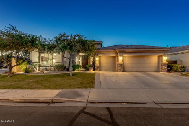1792 W Prescott Drive, Chandler, AZ 85248 (MLS #5924002) :: Devor Real Estate Associates