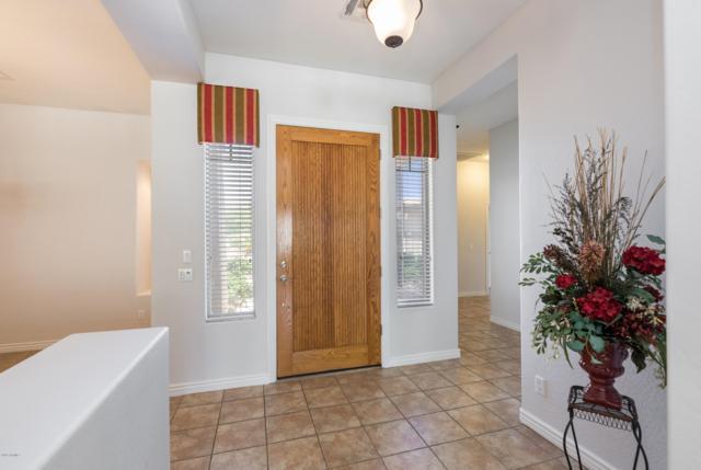 5920 N 132ND Drive, Litchfield Park, AZ 85340 (MLS #5924011) :: CC & Co. Real Estate Team