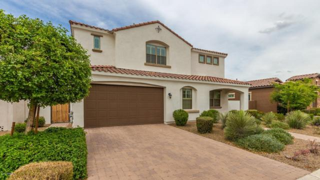 1476 W Sea Fog Drive, Gilbert, AZ 85233 (MLS #5924014) :: The Property Partners at eXp Realty