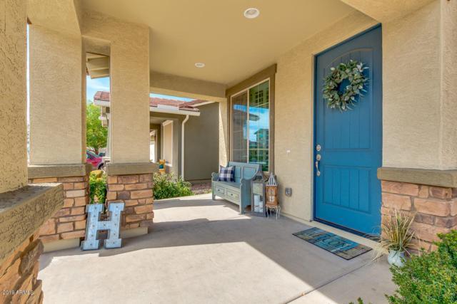 4256 E Mesquite Street, Gilbert, AZ 85296 (MLS #5924026) :: Riddle Realty