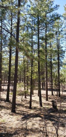 1300 S Jimson Loop, Show Low, AZ 85901 (MLS #5924093) :: Team Wilson Real Estate