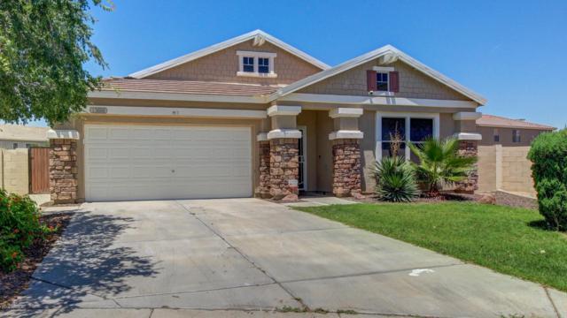 13686 W San Juan Avenue, Litchfield Park, AZ 85340 (MLS #5924128) :: The Results Group