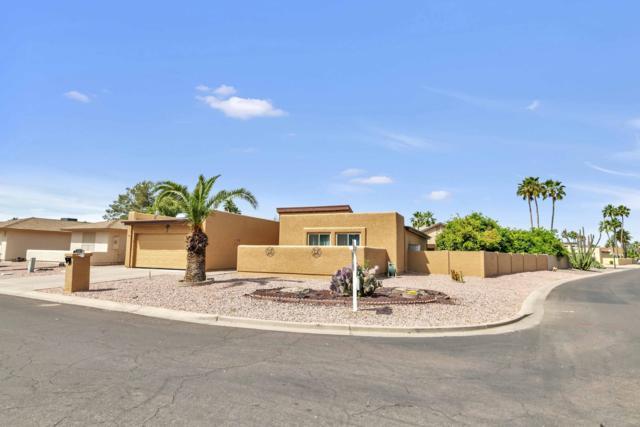 26250 S Jardin Drive, Sun Lakes, AZ 85248 (MLS #5924171) :: CC & Co. Real Estate Team