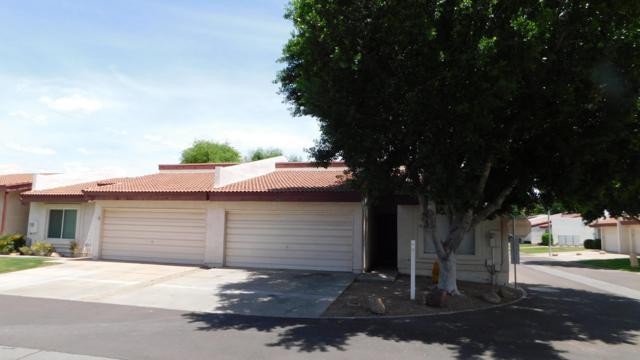 9101 N 68th Lane, Peoria, AZ 85345 (MLS #5924174) :: CC & Co. Real Estate Team
