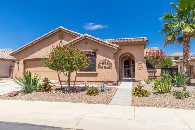 522 E Quail Drive, Casa Grande, AZ 85122 (MLS #5924269) :: Yost Realty Group at RE/MAX Casa Grande