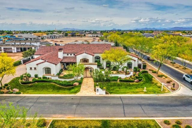 2670 E Lovebird Lane, Gilbert, AZ 85297 (MLS #5924349) :: Team Wilson Real Estate