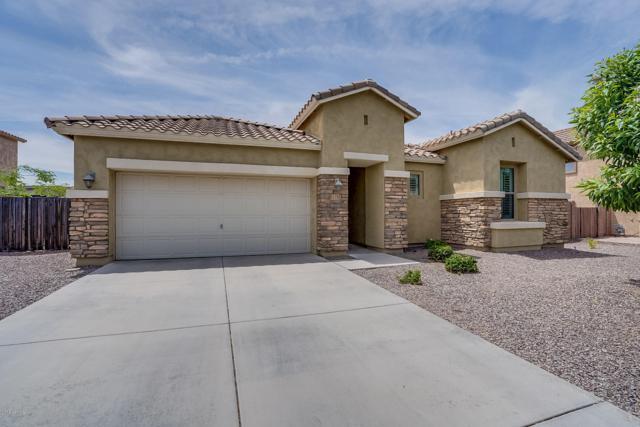 11135 E Roselle Avenue, Mesa, AZ 85212 (MLS #5924375) :: Team Wilson Real Estate