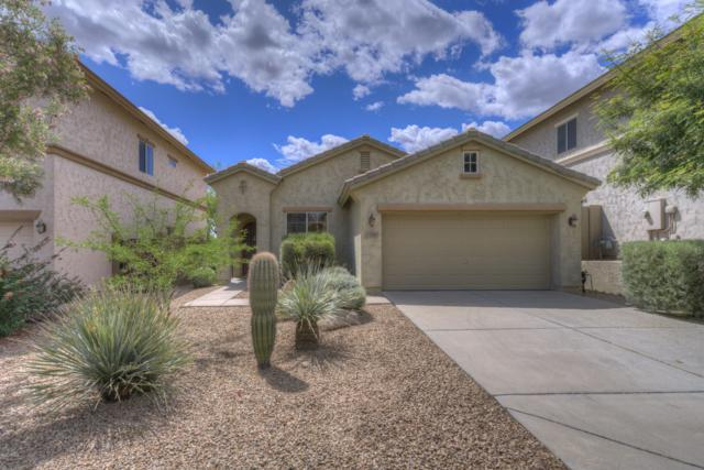 42914 N Raleigh Court, Anthem, AZ 85086 (MLS #5924384) :: The Daniel Montez Real Estate Group