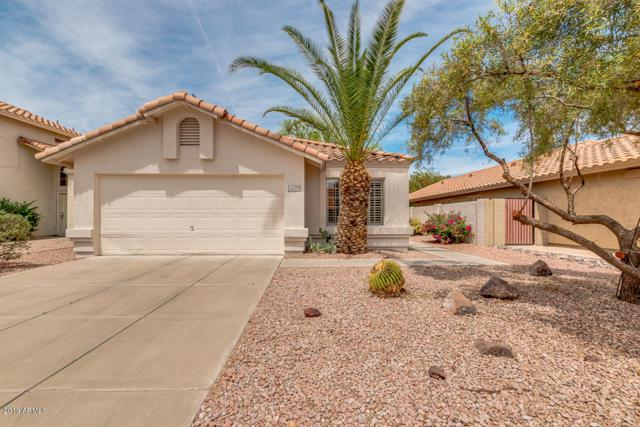 14450 S 43RD Street, Phoenix, AZ 85044 (MLS #5924424) :: Yost Realty Group at RE/MAX Casa Grande