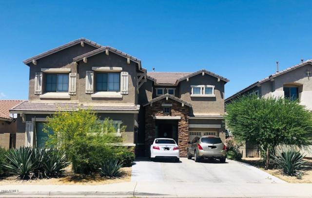 12226 W Calle Hermosa Lane, Avondale, AZ 85323 (MLS #5924431) :: The Daniel Montez Real Estate Group