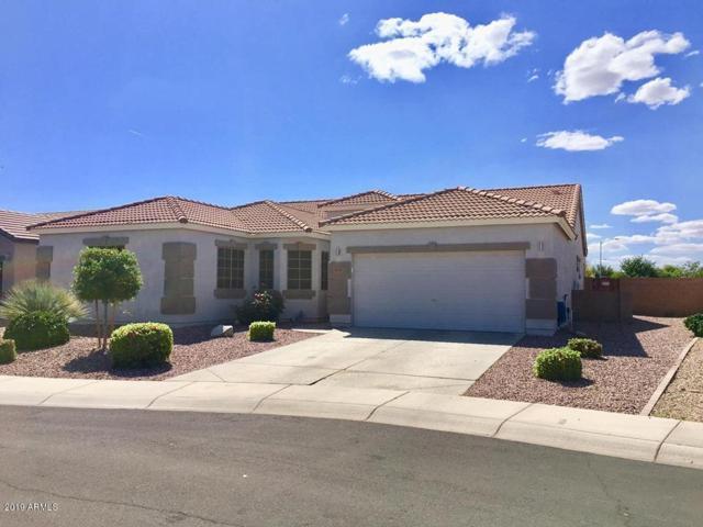 14324 N 174TH Lane, Surprise, AZ 85388 (MLS #5924449) :: CC & Co. Real Estate Team