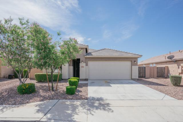 19553 W Harrison Street, Buckeye, AZ 85326 (MLS #5924471) :: CC & Co. Real Estate Team