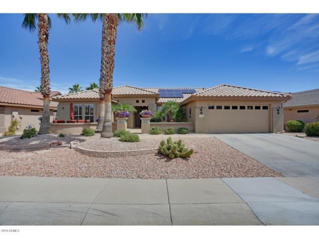 17367 N Havasupai Drive, Surprise, AZ 85374 (MLS #5924513) :: Arizona 1 Real Estate Team