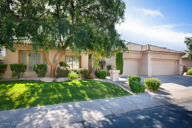 11765 E Terra Drive, Scottsdale, AZ 85259 (MLS #5924517) :: The W Group