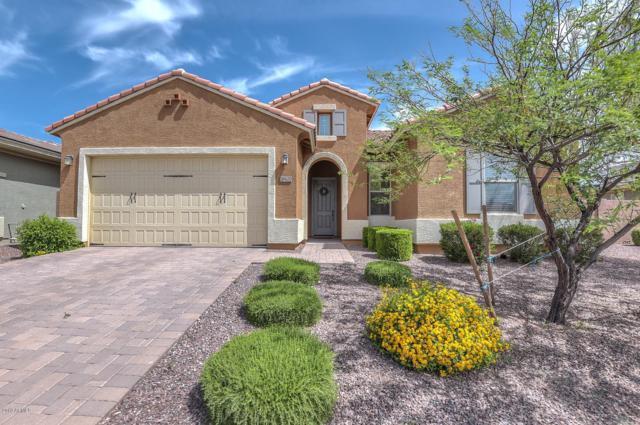 18620 W Williams Street W, Goodyear, AZ 85338 (MLS #5924519) :: CC & Co. Real Estate Team
