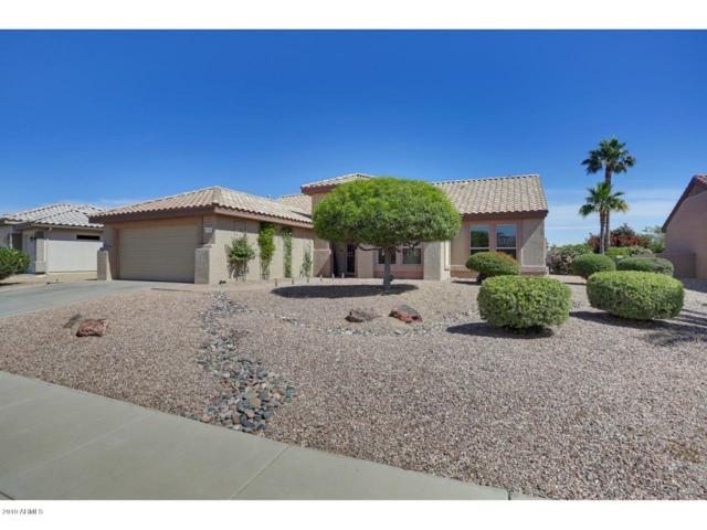 15736 W Eucalyptus Court, Surprise, AZ 85374 (MLS #5924539) :: Kepple Real Estate Group