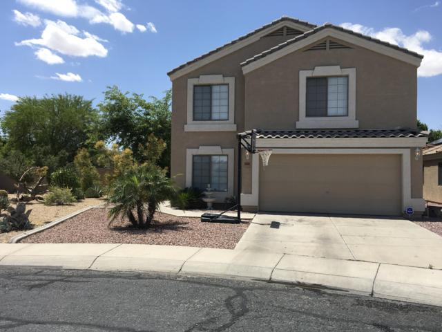 14006 N 130TH Avenue, El Mirage, AZ 85335 (MLS #5924565) :: Arizona 1 Real Estate Team