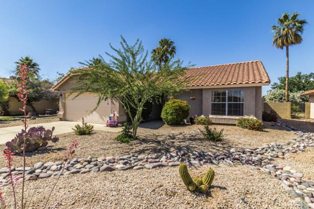 3508 E Utopia Road, Phoenix, AZ 85050 (MLS #5924592) :: CC & Co. Real Estate Team