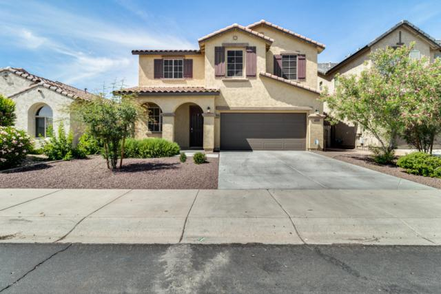13130 W Tether Trail, Peoria, AZ 85383 (MLS #5924598) :: CC & Co. Real Estate Team