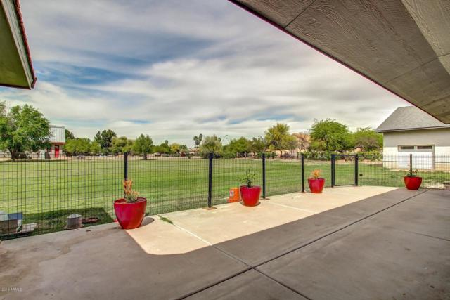 850 E Knox Road, Tempe, AZ 85284 (MLS #5924625) :: CC & Co. Real Estate Team