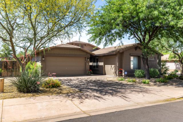 3013 W Rapalo Road, Phoenix, AZ 85086 (MLS #5924719) :: Openshaw Real Estate Group in partnership with The Jesse Herfel Real Estate Group