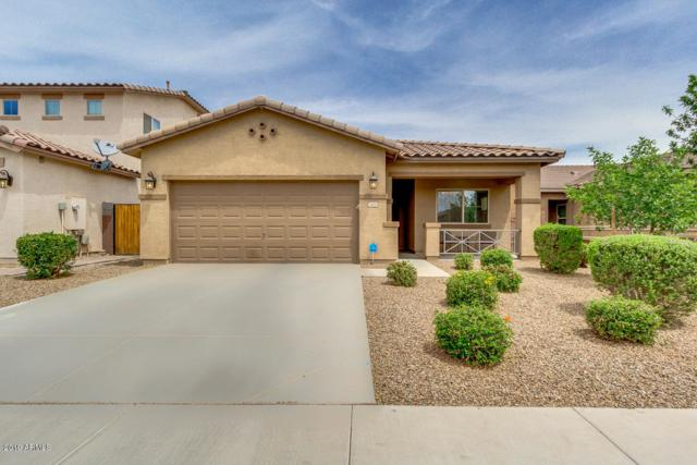 1404 W Apricot Avenue, Queen Creek, AZ 85140 (MLS #5924779) :: CC & Co. Real Estate Team