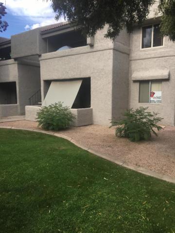 4444 E Paradise Village Parkway N #158, Phoenix, AZ 85032 (MLS #5924814) :: Phoenix Property Group