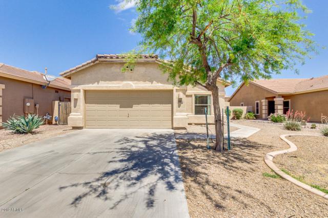 44384 W Caven Drive, Maricopa, AZ 85138 (MLS #5924871) :: CC & Co. Real Estate Team